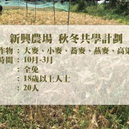新興農場─秋冬共學計劃